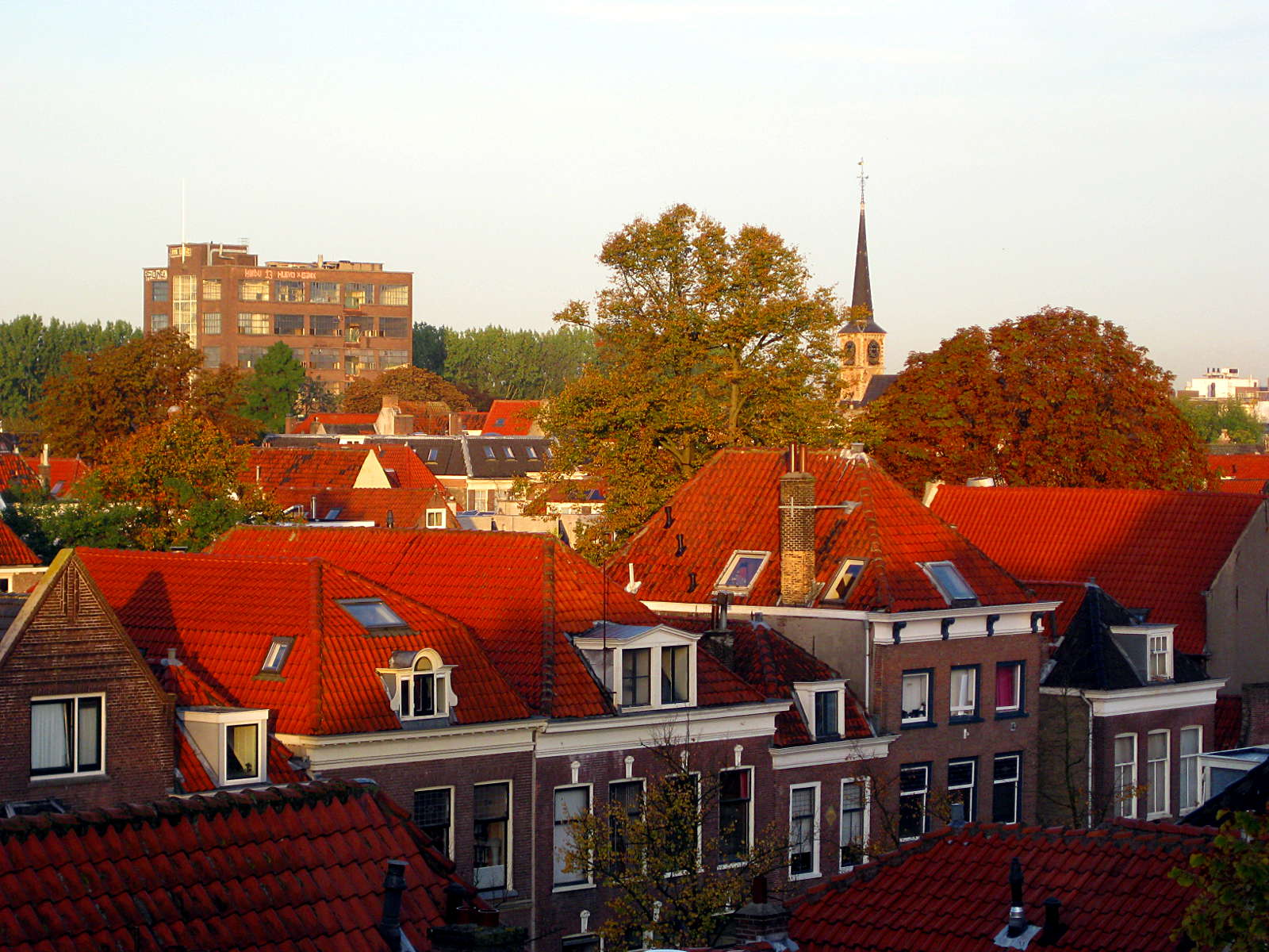 rooftops-IMG_0322-60q